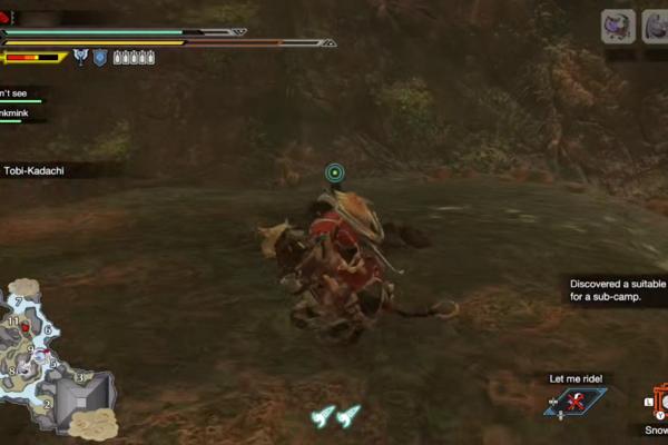 水没林,熔岩洞辅助营地位置游戏攻略