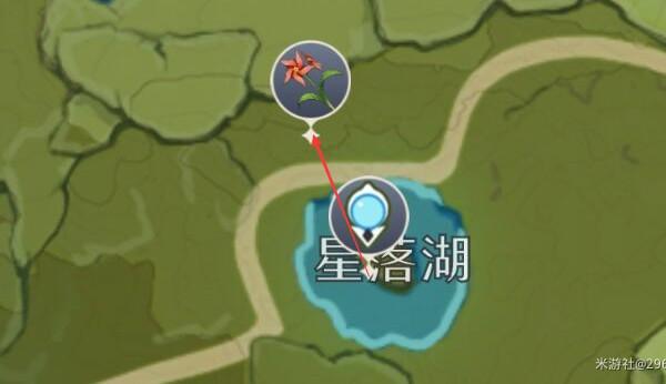 原神风车菊怎么采集游戏攻略